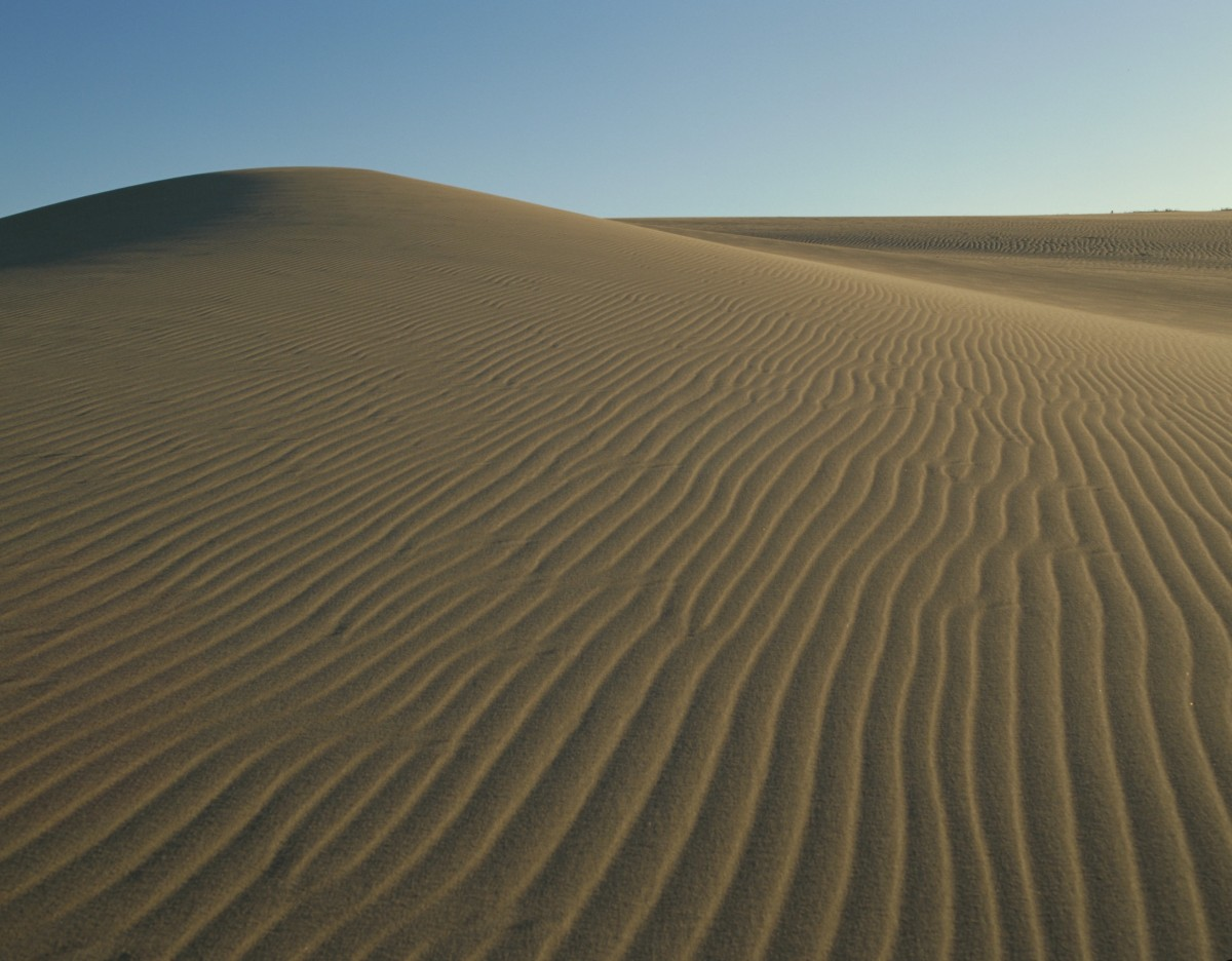 เนินทรายทตโตะริ